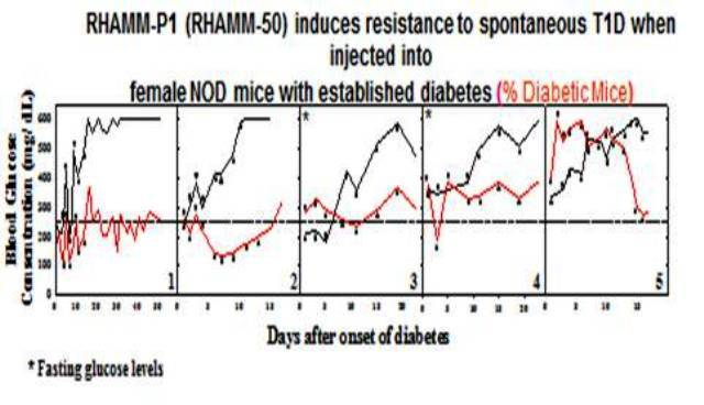Therapeutic effect of RHAMM (CD168) on type 1 and type 2 diabetes as well as on other autoimmune diseases