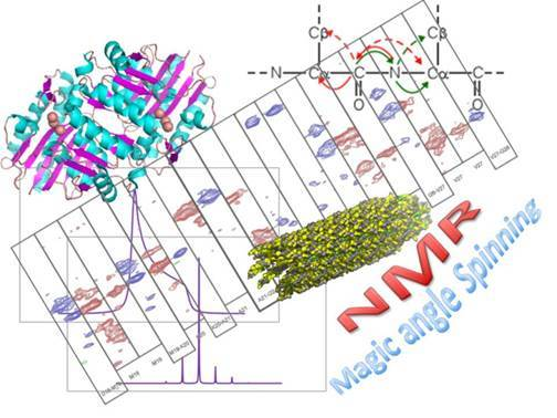 Characterization of organic, inorganic and biological materials by Solid state NMR